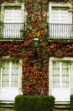 Herbst Stockbilder