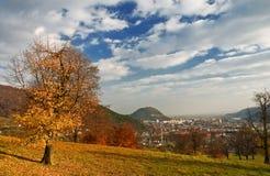 Herbst 3 Stockbild