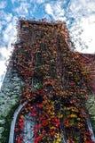Herbst 4 Lizenzfreie Stockfotografie