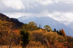 Herbst in Abruzzo lizenzfreie stockbilder
