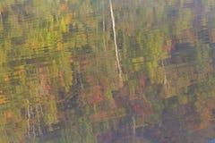 Herbst Adirondack Reflexionen Stockbild