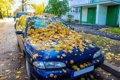 Herbst, Ahornblätter, auf einem Auto Lizenzfreies Stockfoto