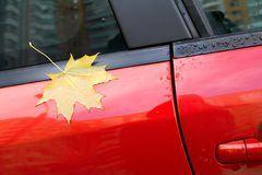 Herbst-Ahornblatt auf dem Auto Stockfotografie