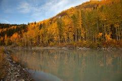 Herbst in Alaska Lizenzfreies Stockbild