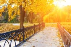 Herbst - alte Brücke im nebelhaften Park des Herbstes Stockbild