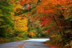 Herbst-Antrieb Stockfotografie