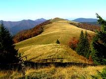Herbst auf Bergwiesen Stockfoto