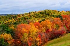 Herbst auf dem Abhang stockfoto