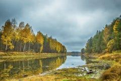 Herbst auf dem Fluss Mologa Lizenzfreie Stockfotos
