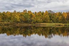 Herbst Auf dem Fluss Mologa Stockbild