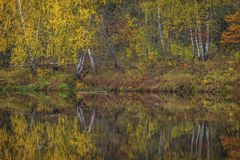 Herbst Auf dem Fluss Mologa Lizenzfreies Stockfoto