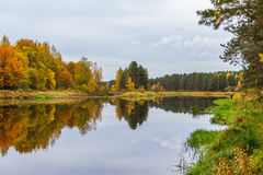 Herbst Auf dem Fluss Mologa Stockfotografie