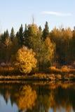 Herbst auf dem Schlange-Fluss Lizenzfreie Stockbilder