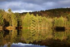 Herbst auf dem See stockbild