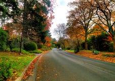 Herbst auf der Landstraße Stockbild