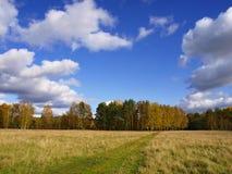 Herbst auf der Natur Lizenzfreie Stockfotografie