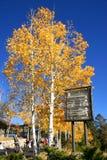 Herbst auf Montierungs-Zitrone Lizenzfreies Stockfoto