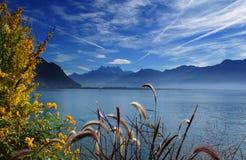 Herbst auf See lizenzfreie stockfotografie