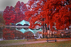 Herbst auf See Stockfotografie