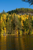 Herbst auf See in Finnland Stockbild