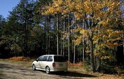 Herbst-Autoreise Stockbilder