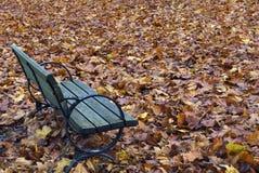 Herbst-Bank Stockbild