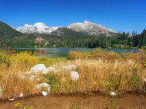 Herbst bei Strbske Pleso, hohes Tatras, Slowakei Stockbild