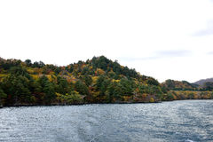 Herbst bei Towada Stockbilder