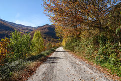 Herbst in Bierzo Lizenzfreie Stockfotos