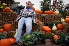 Herbst-Bildschirmanzeige Lizenzfreie Stockfotografie