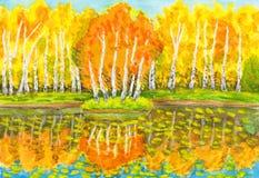 Herbst, Birkenwald und wenig Insel mit den Birken, malend Stockbild