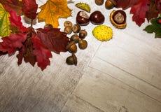 Herbst-Blätter über hölzernem Hintergrund Stockfotos