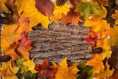 Herbst-Blätter über hölzernem Hintergrund Kopieren Sie Platz Stockbild