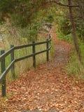 Herbst-Blätter Lizenzfreies Stockbild