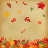 Herbst-Blätter auf altem Papier Stockbild