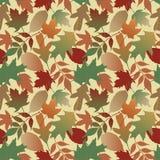 Herbst-Blätter Gradient_Yellow Stockfoto