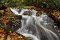 Herbst-Blätter und Gebirgsströme stockfoto
