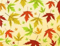 Herbst-Blätter Vector Abbildung Stockbild