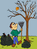 Herbst-Blatt-Fallen Stockfotografie