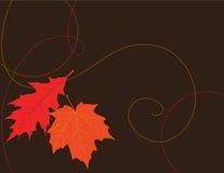 Herbst-Blatt-Hintergrund Lizenzfreies Stockbild