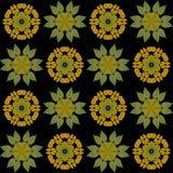 Herbst-Blatt-Kaleidoskope Stockbilder