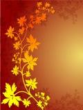 Herbst-Blatt-Rand Stockfoto