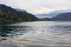 Herbst am Bled See in Slowenien lizenzfreie stockbilder