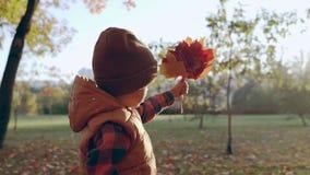 Herbst Blick des kleinen Jungen zum Ahornblatt Glückliche Kindheit Autumn Time Kleiner Junge hält Ahornblatt stock footage