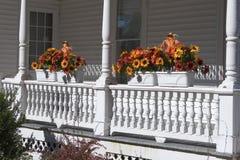 Herbst-Blumen auf Geländer Lizenzfreie Stockfotografie