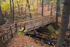 Herbst-Brücke stockbild