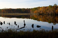 Herbst-Brücke stockbilder
