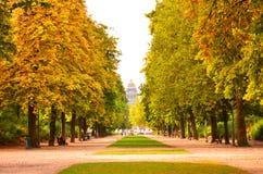 Herbst in Brüssel lizenzfreie stockbilder