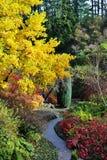 Herbst butchart Gärten Lizenzfreie Stockfotos