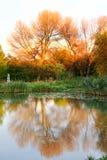 Herbst-Color See Lizenzfreie Stockfotografie